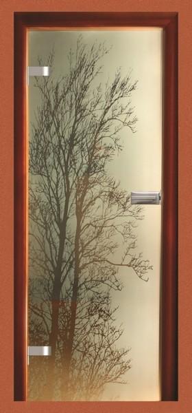 Skleněné dveře - model 19