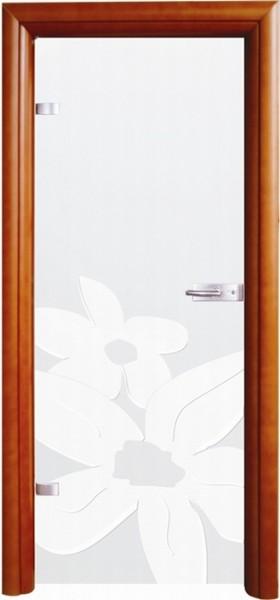 Skleněné dveře - model 6